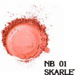NB 01 SKARLETT