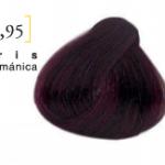 0,95 iris germanica
