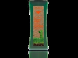 Био шампоан за третирана коса BioKera от Salerm Cosmetics на ниски цени