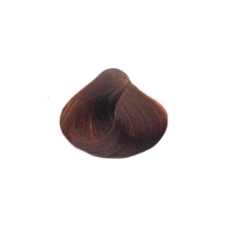 Професионална боя за коса с амоняк Salerm Vision Light-brown-brown-copper-5.74